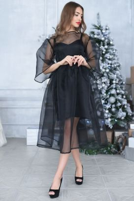 50 Organza Outfits You Should to Try Ideas 32