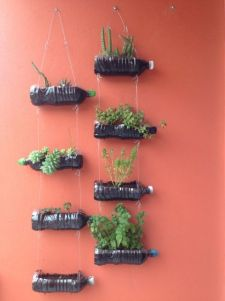 50 Ways to Reuse Plastic Bottles to Cute Planters Ideas 8