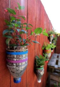 50 Ways to Reuse Plastic Bottles to Cute Planters Ideas 9