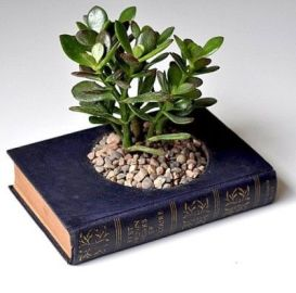 30 How to Reuse Old Book Ideas 7