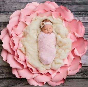 50 Cute Newborn Photos for Baby Girl Ideas 37