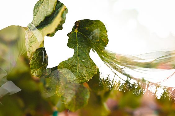 50 Romantic Wedding Double Exposure Photos Ideas 31