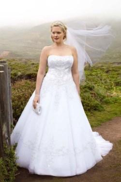 70 Elegant Ball Gown Wedding Dresses For Plus Size 04