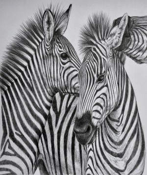 animals easy realistic pencil drawings animal stylegesture sketches drawing