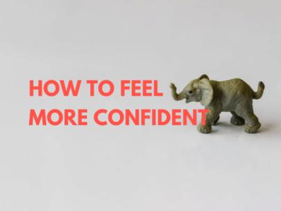 The Confidence Vortex: An SG Investigation