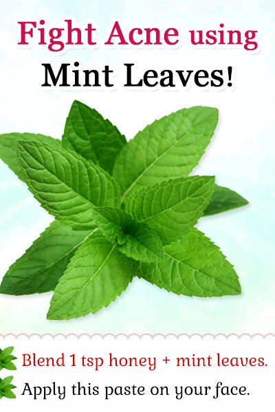 Homemade Facial Mask for Acne using Mint Leaves