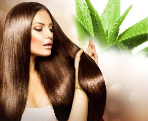 aloe-vera-gel-for-hair-growth