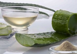 Aloe Vera Juice Benefits for Overall Health