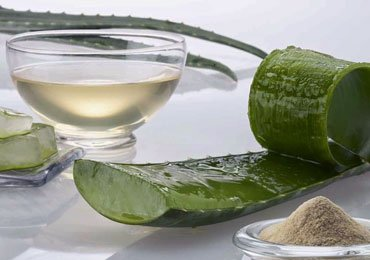 Aloe Vera Juice Benefits for Your Overall Health!