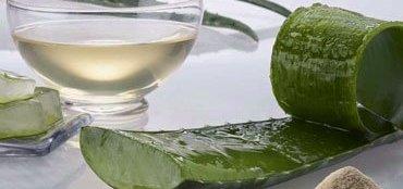 Aloe Vera Juice Benefits for Overall Health