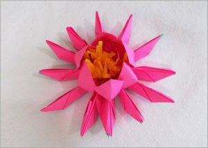 Origami-paper-art-&-craft