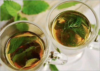 Herbal Remedies for Treating Cold