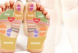 Foot Sole Reflexology Chart