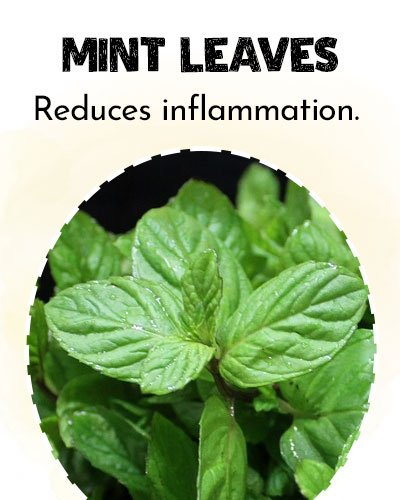 Mint Leaves For Eye Stye