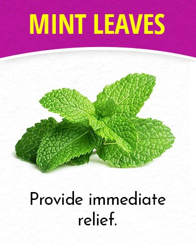 Mint Leaves for Migraines