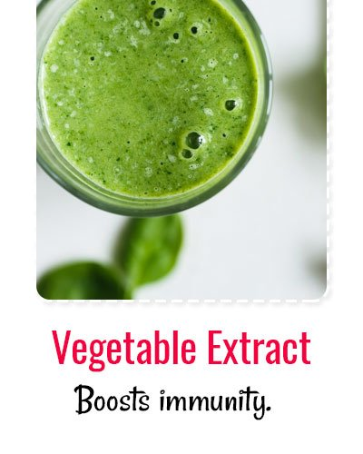 Vegetable Extracts For Dengue Treatment