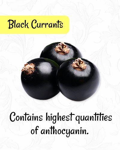 Black Currants for Healthy Eyes