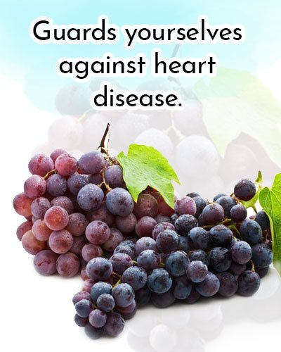 Red Grapes for Antioxidants