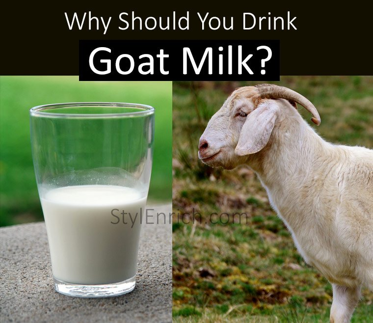 Goat Milk Benefits for Skin, Hair and Health
