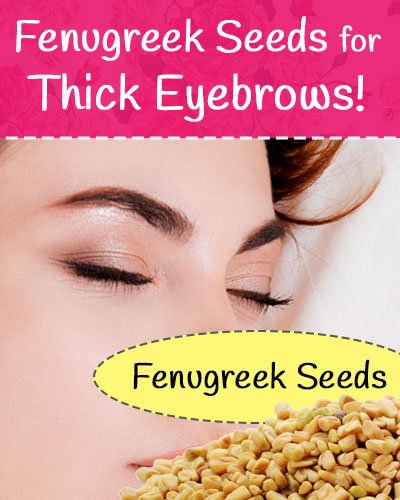 Fenugreek Seeds for Eyebrows