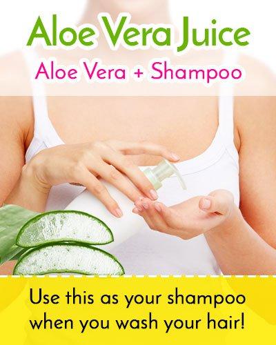 Aloe Vera Juice For Hair Along With Shampoo