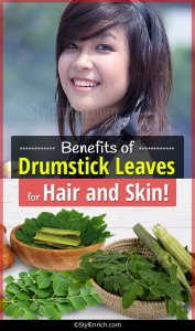 Drumstick or Moringa Benefits