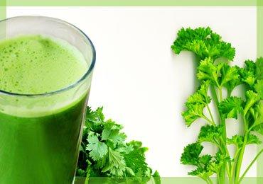 Superb Benefits of Coriander Leaf Juice