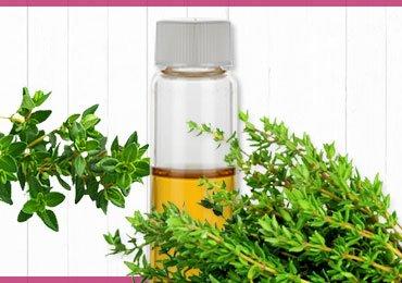Thyme – Health Benefits