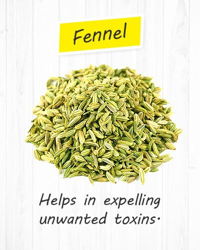 Fennel For Gastritis