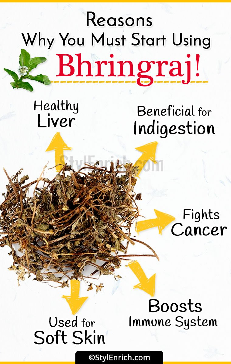 Bhringraj Benefits