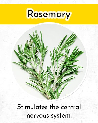 Rosemary to Control Low Blood Pressure