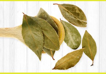 Bay Leaves For Health Benefits