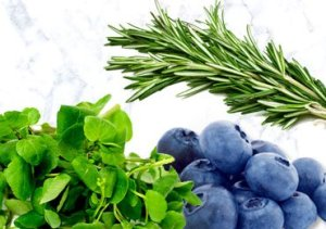 Diet For Varicose Veins