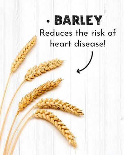 Barley For Diabetics