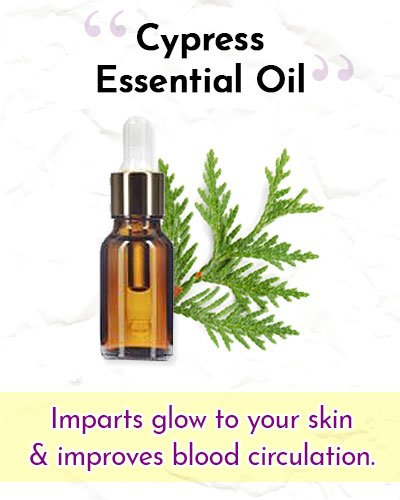 Cypress Essential Oil For Wrinkles