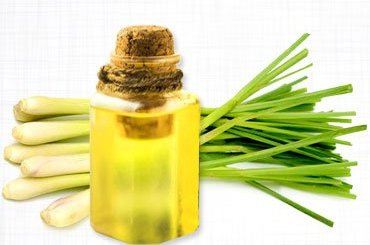 Lemongrass Oil Benefits