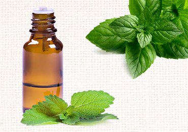 Peppermint Oil Uses