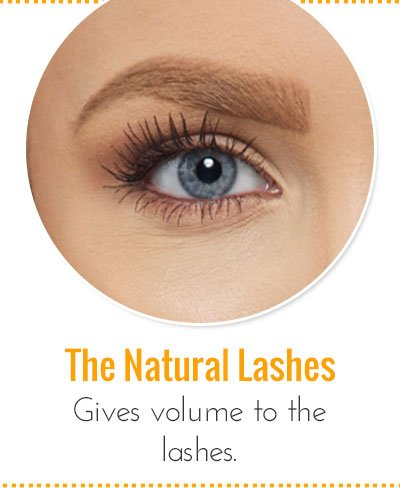 Makeup To Get The Natural Lashes