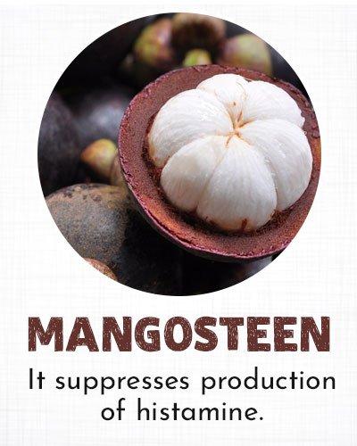 Mangosteen for Allergy