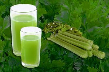 Benefits of Drinking Celery Juice
