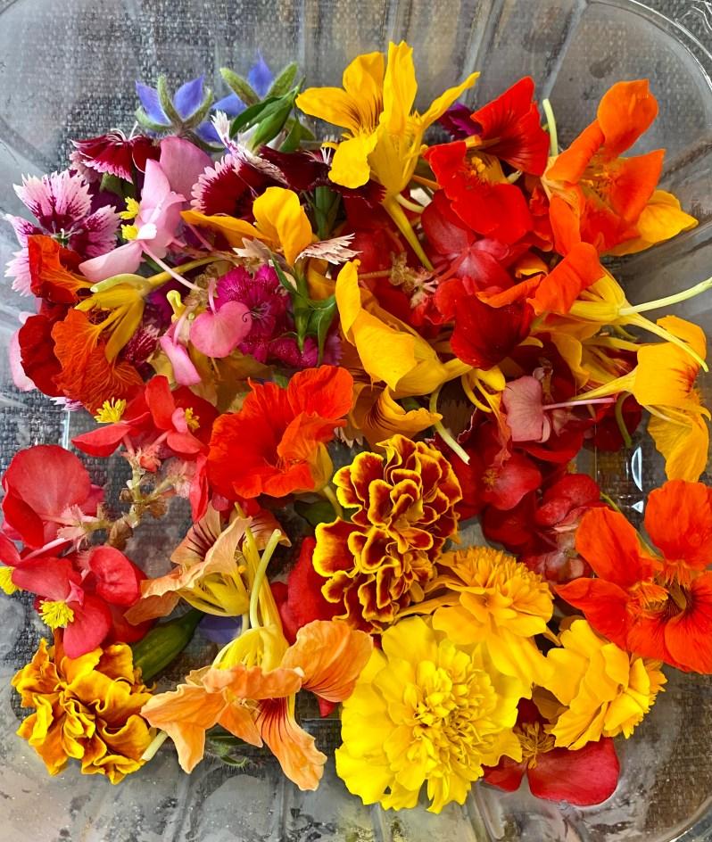edible flowers from Mari's Gardens
