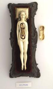 17th-century ivory anatomical model of a pregnant female with removable parts possibly used by obstetric specialists or midwives to provide reassurance for pregnant women. Possibly German.