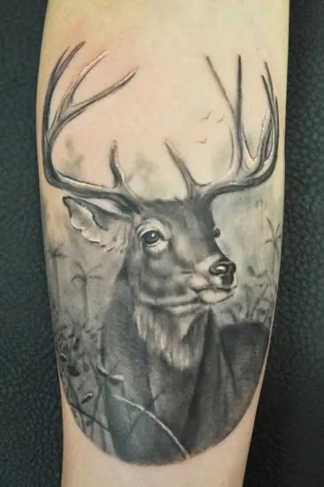 Black And Grey RealisticDeer Tattoo Design