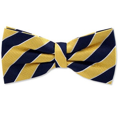 Blue and Yellow striped bow tie from ties.com