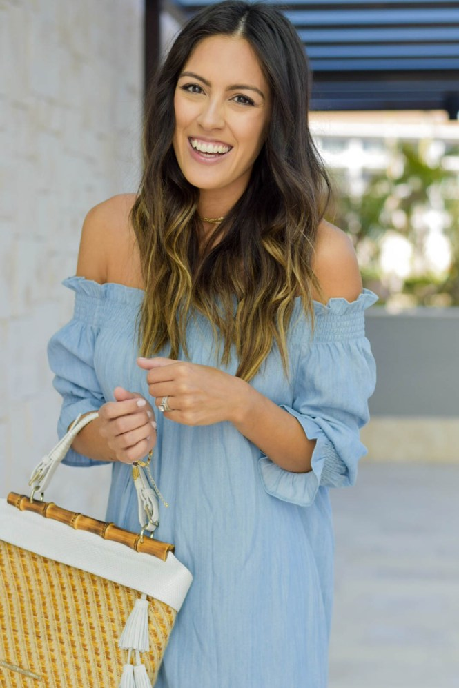 Style The Girl OTS Chambray Dress