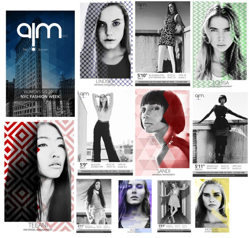 Aim Models SS16 Model Show Package