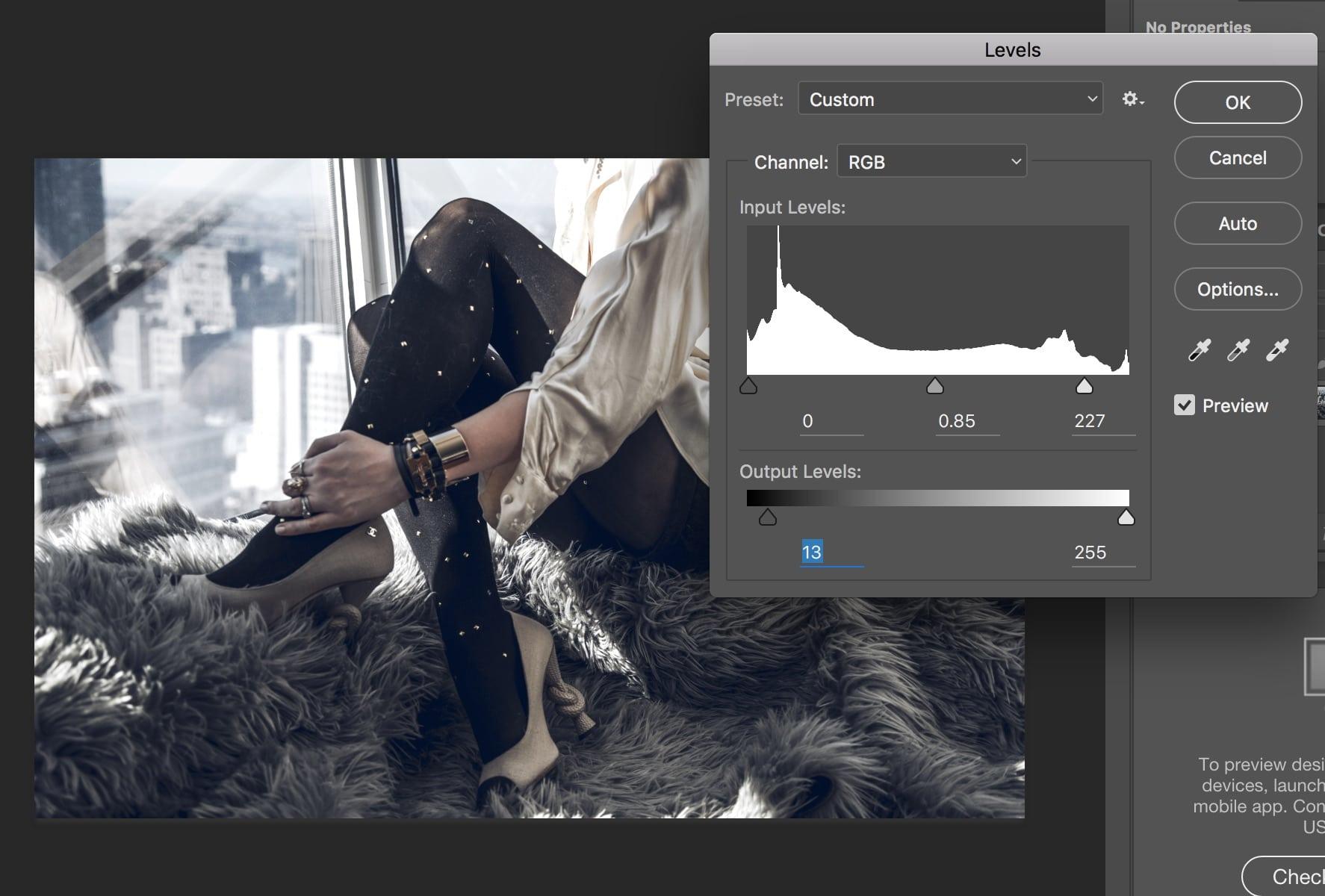 Essential Photoshop Tools Levels Adjustment After