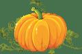 pumpkin Style Unsettled