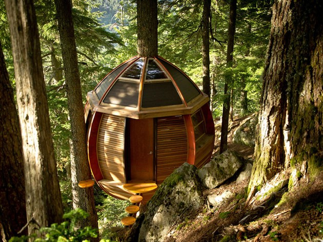 egg shape tree house