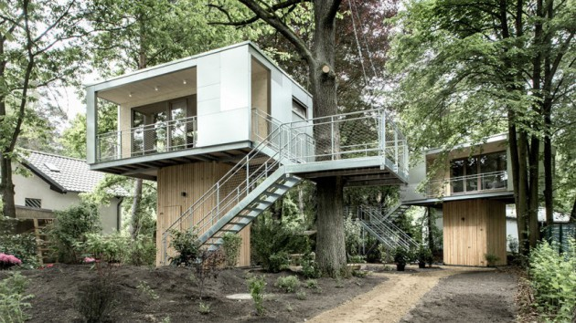 rent home tree house